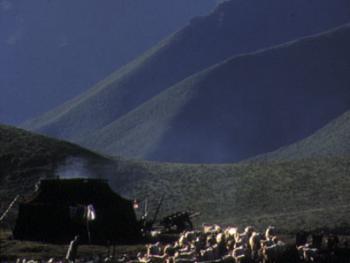 05.(牧民之家五):山坳里的黑色牦帐篷因在避风处,搭建更为简单,立柱也少了一半。