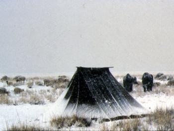 03.(牧民之家三):专为去圈放牧使用的微型帐篷。