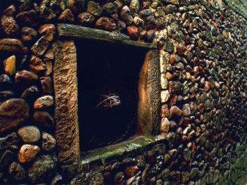 石头砌成的门窗由于年代久远,只好用箬帽来挡风遮雨。