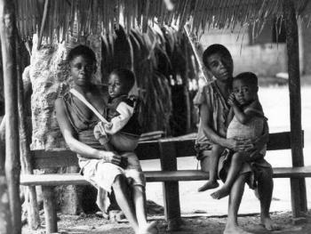 """中非原始森林中的""""俾格米""""部落6"""