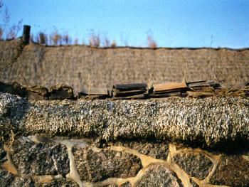"""(99年12月)院墙上也""""缮""""上厚厚的海草,并压上砖瓦,以防风吹散落。老百姓俗称""""压脊"""""""