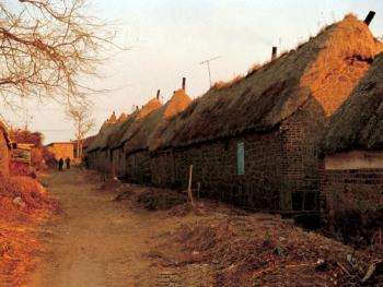 """(99年2月)一排排由高到低,依地势而建,家家连靠在一起的海草房,老百姓俗称""""接山"""""""