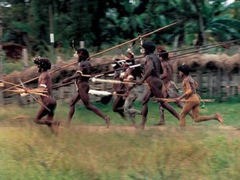 新几内亚食人族