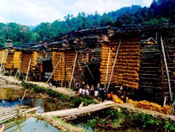 5.小溪、禾凉、粮仓、吊角楼和鼓楼组成的侗寨村寨。1997年11月,从江县