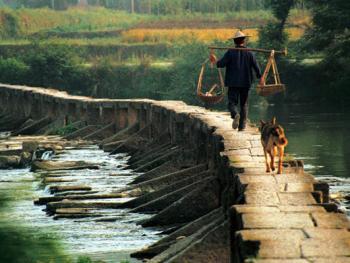 """2.松洲桥,桥长95米,桥下水中原始""""丁步跳""""历历可数。年代在明之前。2002年01月周村"""