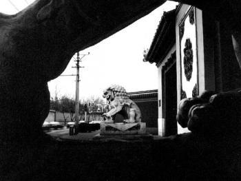 10.北图石狮