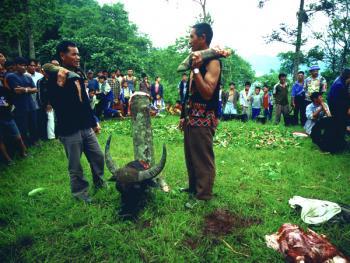 哈尼族六月节08