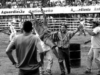 哥伦比亚斗牛12