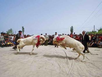 维吾尔的民间体育运动02