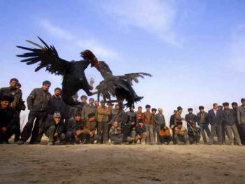 维吾尔的民间体育运动03