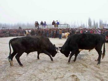 维吾尔的民间体育运动05