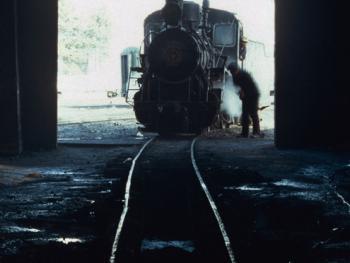 森林小火车11