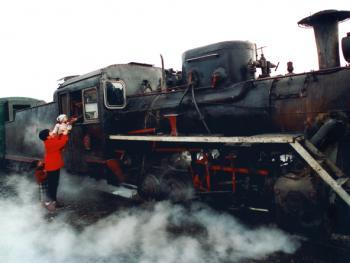 森林小火车09
