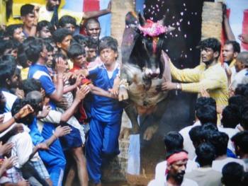 印度南部的迦里卡图节03