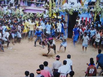 印度南部的迦里卡图节04