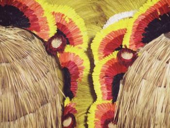 巴西狂欢节1