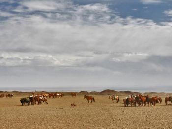蒙古国的那达慕大会01