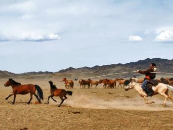 蒙古国的那达慕大会05