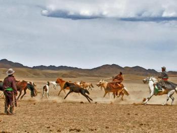 蒙古国的那达慕大会07
