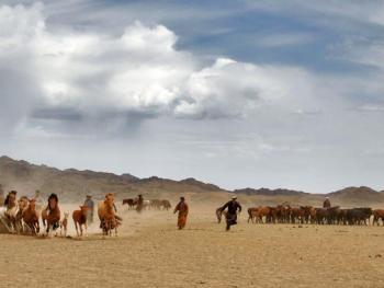 蒙古国的那达慕大会08