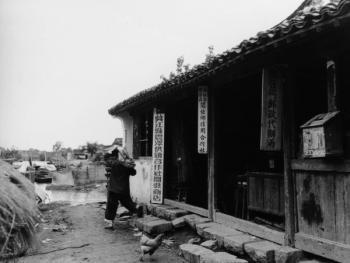江南水乡春天的农事活动10