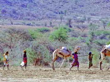 多民族的厄立特里亚01