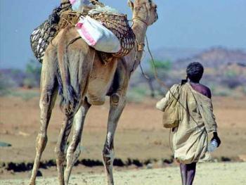 多民族的厄立特里亚