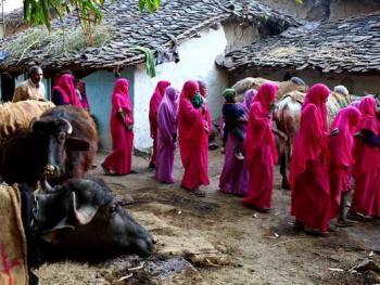 粉红色的印度妇女