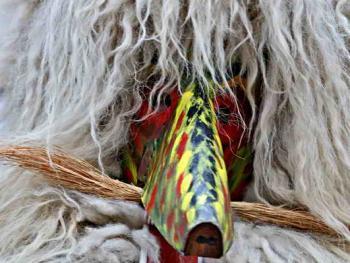 普图伊的狂欢节11