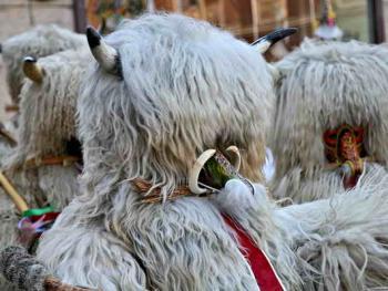 普图伊的狂欢节07