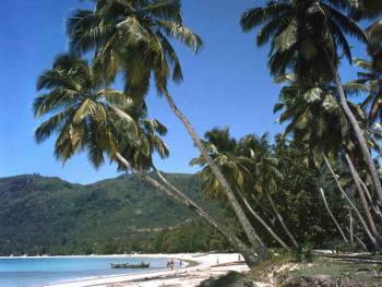 塞舌尔群岛上的渔民