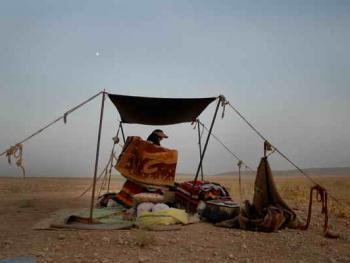 伊朗的游牧民族卡什加人12
