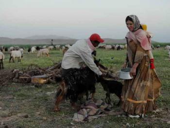 伊朗的游牧民族卡什加人