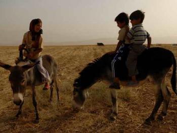 伊朗的游牧民族卡什加人06