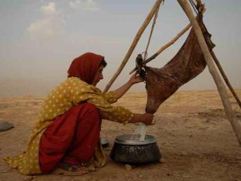 伊朗的游牧民族卡什加人08