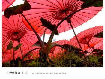 泸州红伞08