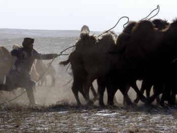 蒙古族传统体育竞技05