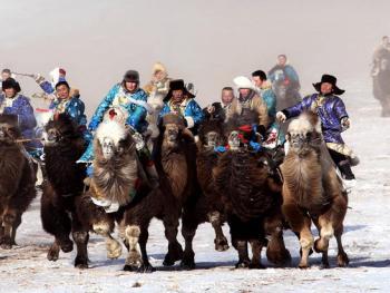 蒙古族传统体育竞技06