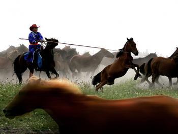 蒙古族传统体育竞技09