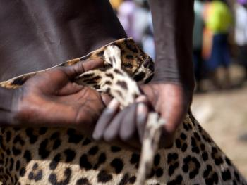 南苏丹传统摔跤02