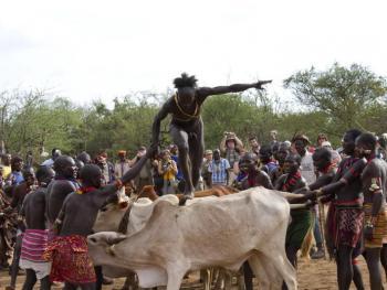 哈马尔人的跳牛仪式