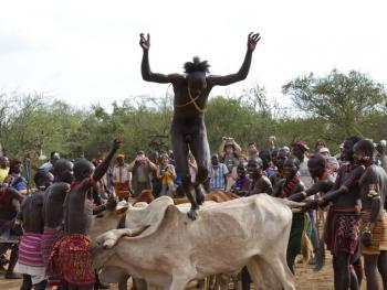 哈马尔人的跳牛仪式12