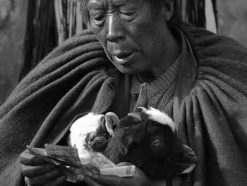 牲畜市场上的彝族人11