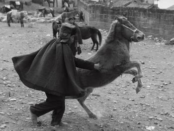 牲畜市场上的彝族人06