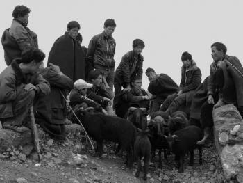 牲畜市场上的彝族人07