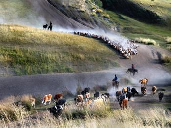 玉其塔什的柯尔克孜族游牧生活10
