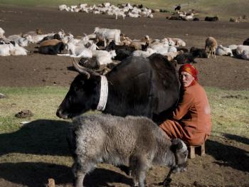 玉其塔什的柯尔克孜族游牧生活07