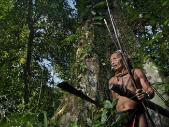 明打威群岛的丛林生活
