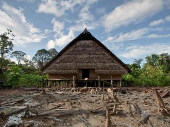 明打威群岛的丛林生活2