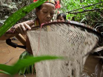 明打威群岛的丛林生活7